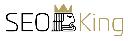 طراحی و بهینه سازی کینگ سایت لوگو